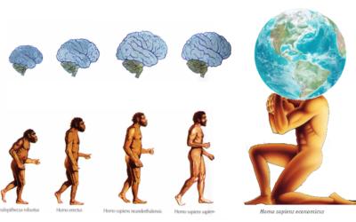 Home Economicus, Homo Sapiens e a Tomada de Decisão